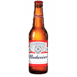 Budweiser Beer Bottles 330ml